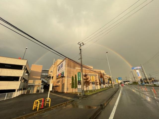 Rainbow。